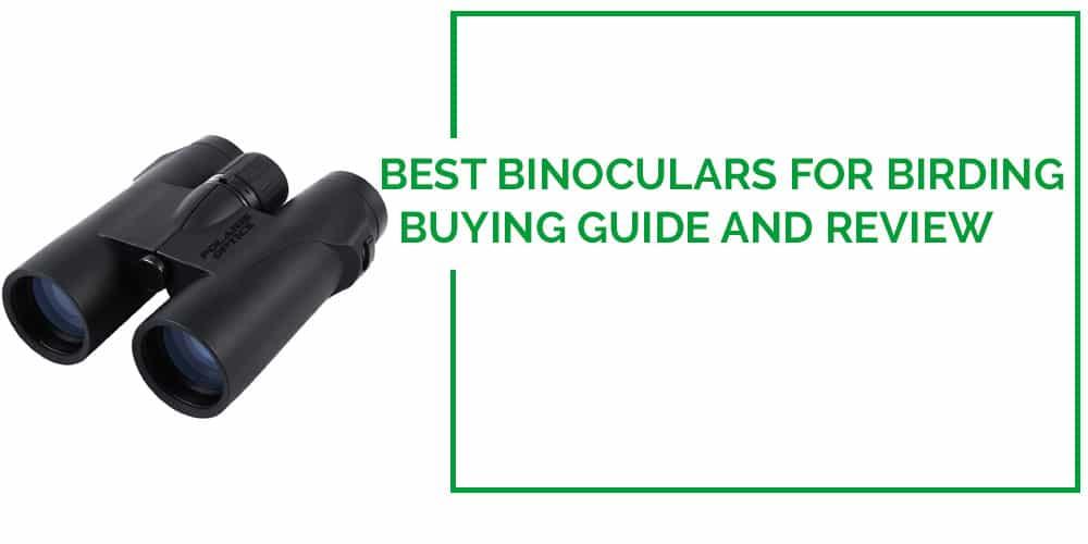 Best Binoculars for Birding reviews 2016