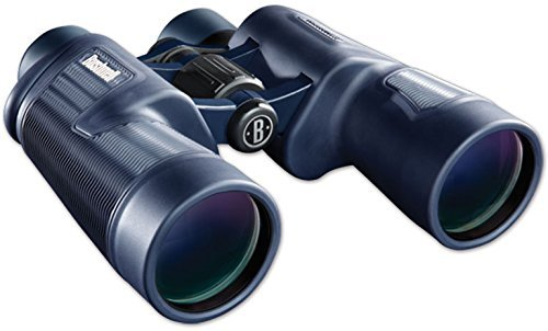 Bushnell 10x42 H2o Roof Prism Waterproof Binoculars Review