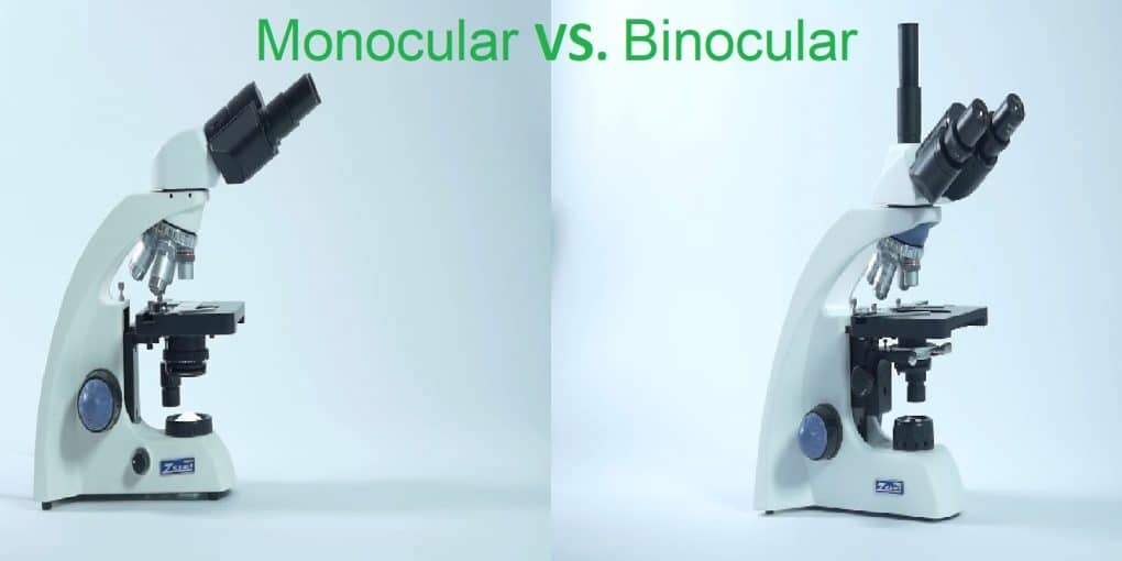 Difference Between Monocular and Binocular Microscope